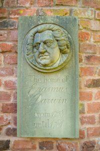 darwin-pavestone
